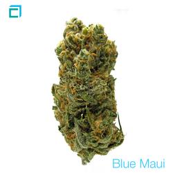 Thumb 14719 bluemaui