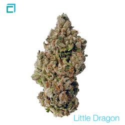 Thumb 7532 little dragon