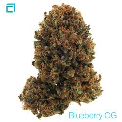 Thumb 5308 blueberryog 0