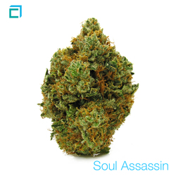 Thumb 14306 soul assassin