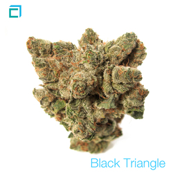 Thumb 9525 black triangle