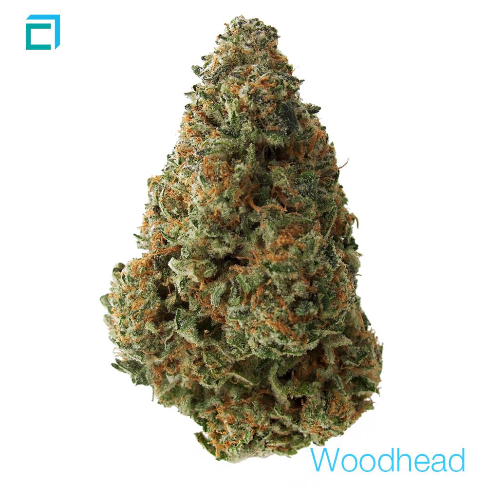 5312 woodhead 0