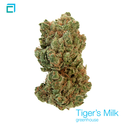 Thumb 22411 tigersmilk