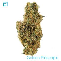Thumb goldenpineapple