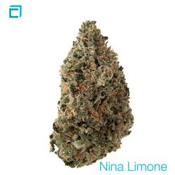 Thumb nina limon