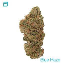 Thumb blue haze