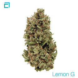 Thumb lemon g